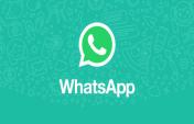 Websitenize ücretsiz whatsapp sohbet baloncuğu ekleyin