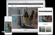 Website build price